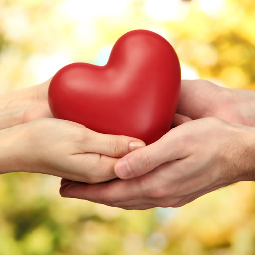 Heart in a hands